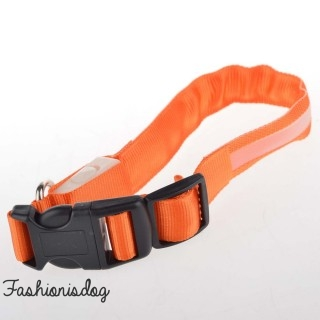 Collier lumineux orange